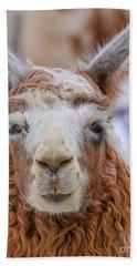 Cute Llama Beach Towel