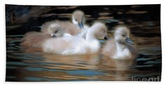 Cygnets Beach Sheet