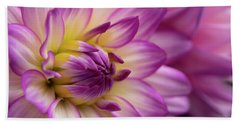 Beach Towel featuring the photograph Dahlia II by John Rodrigues