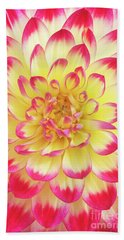 Dahlia Kenora Wow Flower Beach Towel