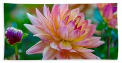Dahlia Splendor Beach Towel