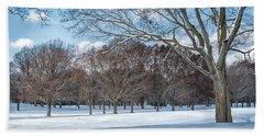 Beach Towel featuring the photograph Dashing Through The Snow by Kim Hojnacki