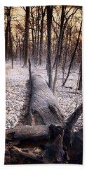 Dead Tree Beach Sheet