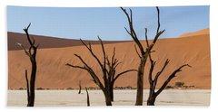 Deadvlei Desert Beach Towel
