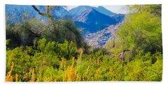 Deep Desert Valley In A Sonoran Desert Spring Beach Sheet