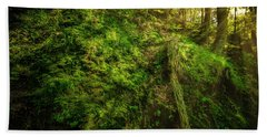 Beach Towel featuring the photograph Deep In The Forests Of Bavaria by David Morefield