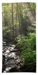 Deep In The Forrest - Sun Rays Beach Towel