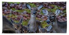 Deer Gathering Beach Towel