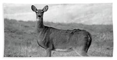 Beach Sheet featuring the photograph Deer In Black And White by Angela Murdock