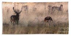 Deer In The Grasses Beach Towel