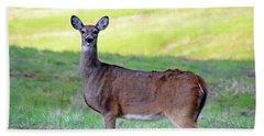Beach Sheet featuring the photograph Deer Standing In A Field by Angela Murdock