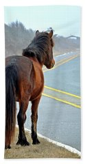 Beach Towel featuring the photograph Delegate's Pride Awaiting Tourists On Assateague Island by Bill Swartwout Fine Art Photography