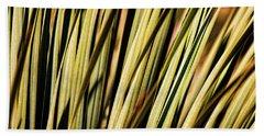 Beach Towel featuring the photograph Desert Grasses II by Leda Robertson