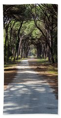 Dirt Pathway In A Mediterranean Pine Forest Beach Towel