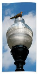 Beach Towel featuring the photograph Dove On A Light Post by Lora J Wilson