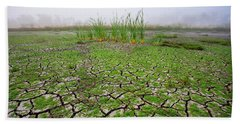 Dry Duck Pond Beach Sheet