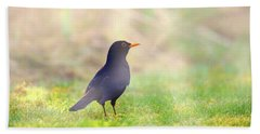 Early Bird Beach Towel