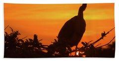 Early Bird Beach Sheet