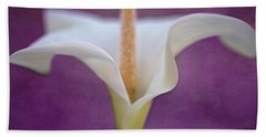 Beach Towel featuring the photograph Easter Lily by John Rodrigues