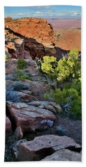 Eastern Canyonlands And La Sal Mountains From Grand View Points Beach Towel