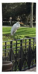 Egret Posing Beach Towel