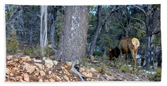Elk In The Grand Canyons 990 Beach Towel