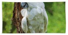 Endangered White Cockatoo Beach Towel