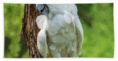 Endangered White Cockatoo Beach Sheet