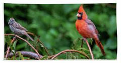 Envy - Northern Cardinal Regal Beach Towel