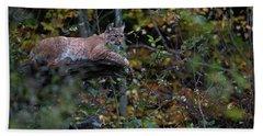 Eurasian Lynx , Lynx Lynx, Resting Hidden Between Bushes Beach Towel
