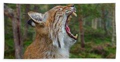 European Lynx Calling Beach Towel