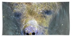 Face Of The Manatee Beach Towel