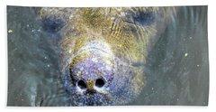 Face Of The Manatee Beach Towel