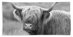 Face-to-face With A Highland Cow - Black And White Beach Towel