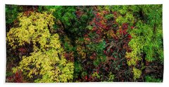 Beach Towel featuring the photograph Fall Color Along The Big Tom by Jon Burch Photography