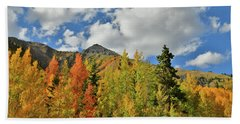 Fall Colored Aspens Bask In Sun At Red Mountain Pass Beach Towel