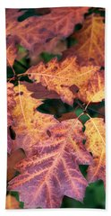 Beach Towel featuring the photograph Fall Flames by Whitney Goodey
