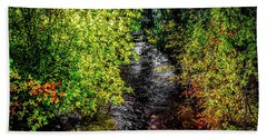 Beach Towel featuring the photograph Fall Foliage by Jon Burch Photography