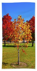 Beach Towel featuring the photograph Fall In Boise by Dart and Suze Humeston