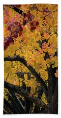Fall In Carlyle Beach Towel