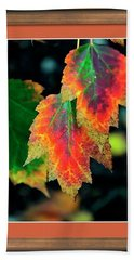 Beach Towel featuring the photograph Fall Leaves 6072 Framed by Jerry Sodorff
