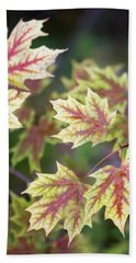 Fall Red And Yellow Leaves 10081501 Beach Sheet