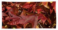 Fall Sweetgum Leaves Df004 Beach Sheet