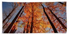 Fall Trees Sky Beach Towel