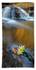 Beach Towel featuring the photograph Fallen Oak Leaf In Vaughan Woods by Rick Berk
