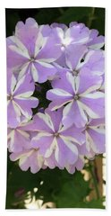 Fancy Phlox Beach Sheet