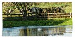 Farm Pond And Cows Beach Towel