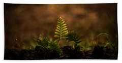Fern Of Life Beach Sheet