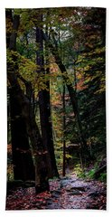 Find Your Path Beach Towel