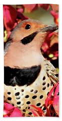 Yellow-shafted Flicker Beach Towel